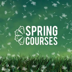 BEST Courses in Spring 2019